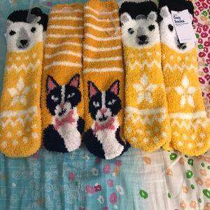 Bundle of 5 cozy socks